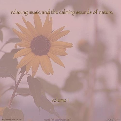Relaxing Music & The Calming Sounds Of Nature - Volume 1 by Music For Meditation