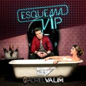 Esquema Vip - Single by Gabriel Valim