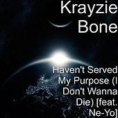 Haven't Served My Purpose (I Don't Wanna Die ) by Krayzie Bone