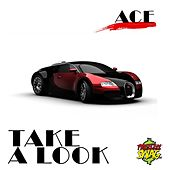 Take a Look by Ace