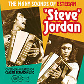 The Many Sounds Of Steve Jordan by Steve Jordan