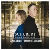 Schubert: Piano à quatre mains by Claire Désert and Emmanuel Strosser