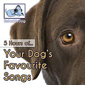 Your Dog's Favourite Songs (5 Hours) by Relaxmydog