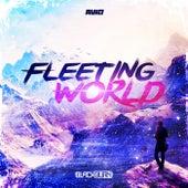 Fleeting World by Blackburn