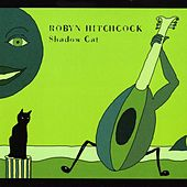 Shadow Cat by Robyn Hitchcock
