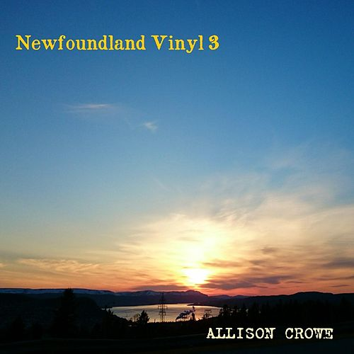 Newfoundland Vinyl 3 by Allison Crowe