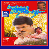 Kaalamellam Kadhal Vaazhga (Original Motion Picture Soundtrack) by Various Artists