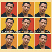 Needle In A Haystack by Ellis Hooks