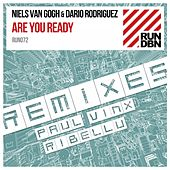Are You Ready (Remixes) by Niels Van Gogh