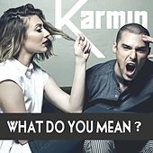 What Do You Mean? - Single by Karmin