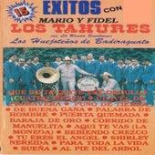 15 Exitos Con Mario Y Fidel Los Tahures Con La Banda Sinaloense Los Huejotenos De Badiraguato by Los Tahures