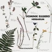 Herbarium by Dominik Eulberg