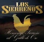 Homenaje Sierreño Al Gallo De Oro by Los Sierrenos