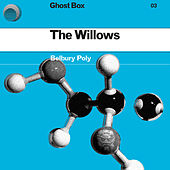 The Willows by Belbury Poly