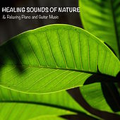 Healing Sounds of Nature & Relaxing Piano and Guitar Music for Meditation, Yoga, Relax and Sleep by Sounds of Nature White Noise for Mindfulness Meditation and Relaxation BLOCKED