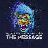 The Message (feat. Damian 'Jr. Gong' Marley) - Single by Bunji Garlin
