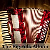 The Big Folk Album by Various Artists