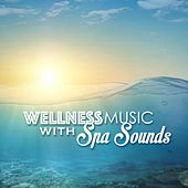 Wellness Music with Nature Sounds - Beauty Center & Spa Background Tracks by Various Artists