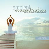 Ambient Concentration: Natural Sounds to Focus and Meditate by Various Artists
