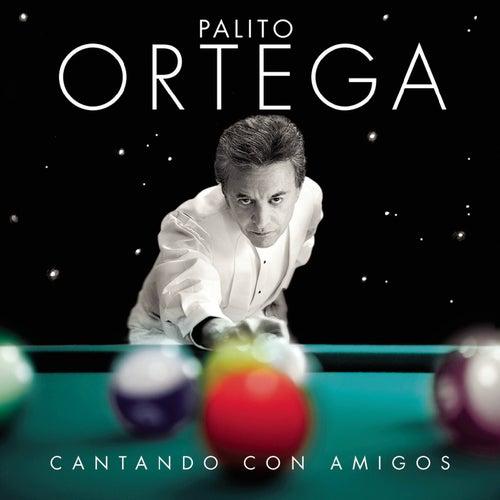 Cantando Con Amigos by Palito Ortega