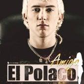 Amiga by Polaco