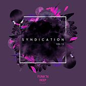 Syndication, Vol. 13 - Single by Various Artists