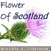 Flower of Scotland: Beautiful Scottish Music by Various Artists