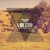 Voltaik #16 by Various Artists