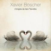 L'origine de mon bien-être by Xavier Boscher