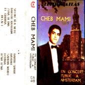 En concert public à Amsterdam by Cheb Mami