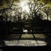 Dizzy Shadows, Vol.1 von Nina Simone