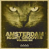 Amsterdam Night Grooves, Vol. 6 by Various Artists