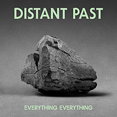 Distant Past by Everything Everything