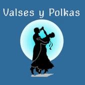 Valses y Polkas by Großen Wiener Orchester