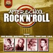 After School Rock 'N' Roll von Various Artists