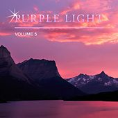 Purple Light, Vol. 5 by Various Artists