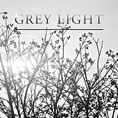 Grey Light, Vol. 5 by Various Artists