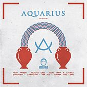 Aquarious Riddim by Various Artists