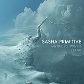 Anytime You Want It / Let Go by Sasha Primitive