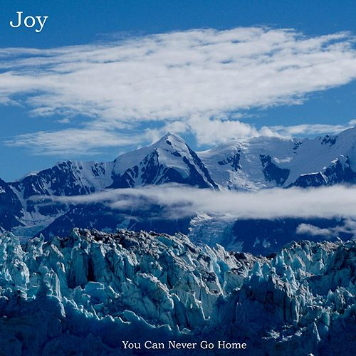 You Can Never Go Home by Joy
