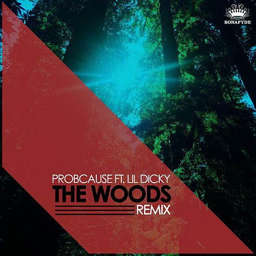 The Woods (Remix) [feat. Lil Dicky] by Probcause