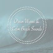 Ocean Waves & Calm Beach Sounds by Various Artists