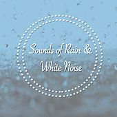 Sounds of Rain & White Noise by Various Artists