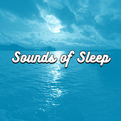 Sounds of Sleep by Various Artists