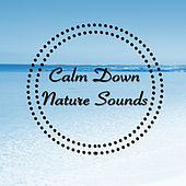 Calm Down Nature Sounds by Various Artists