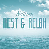 Nature Rest & Relax by Various Artists