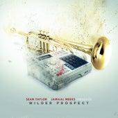 Wilder Prospect by Sean Taylor