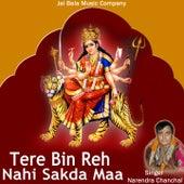 Tere Bin Reh Nahi Sakda Maa by Narendra Chanchal