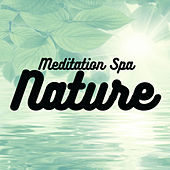 Meditation Spa Nature by Various Artists
