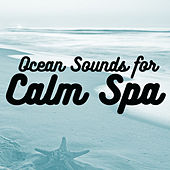 Ocean Sounds for Calm Spa by Various Artists